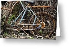 Rusty Wheel Of Bicycle Greeting Card