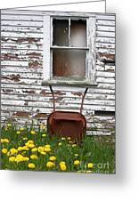 Rusty Wheelbarrow And Wildflowers Greeting Card