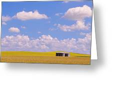 Rye, Canola And Grainery, Bruxelles Greeting Card