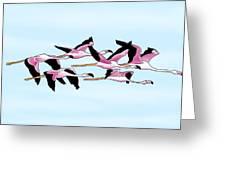 Sa Genti Arrubia  Flamingos Greeting Card