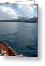 Safari Rose.on Lake Tahoe Greeting Card