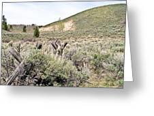 Sage And Pasture Greeting Card