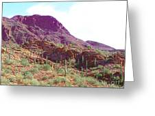 Saguara National Forest In Arizona Greeting Card