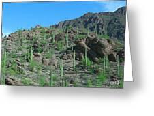 Saguara National Forest Protected Cactus Greeting Card