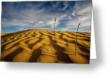 Sahara Desert, Tunisia, Africa Greeting Card