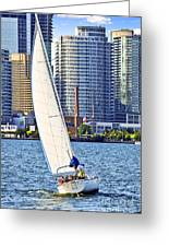 Sailboat In Toronto Harbor Greeting Card