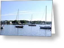 Sailboats In Bay Greeting Card
