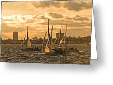 Sailboats On Lake Ontario At Sunset Greeting Card