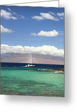 Sailing And Diving Maui Greeting Card