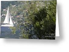 Sailing Boat And Trees Greeting Card