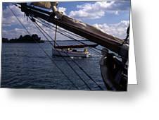 Sailing Coastal Maine Greeting Card
