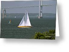 Sailing Newport Greeting Card