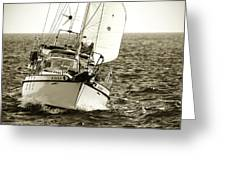 Sailing The Icw -1 Greeting Card