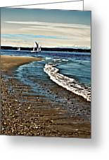 Sailing The Puget Sound Greeting Card
