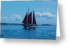 Sails Off The San Juans Greeting Card