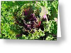 Salad Maker Greeting Card