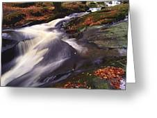 Sally Gap, County Wicklow, Ireland Greeting Card