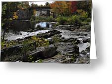 Salmon Falls Sfp Greeting Card
