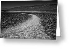 Salt Road Greeting Card