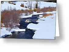 San Juan River At At Last Ranch Greeting Card