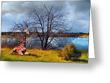 Sanctuary . 7d12636 Greeting Card