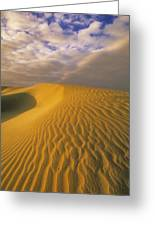 Sand Dune And Sky Greeting Card