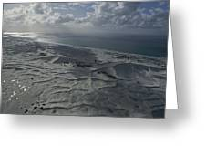 Sand Dune Complex Along The Shore Greeting Card