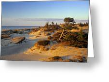Sand Dunes At Sunset, Lake Huron Greeting Card