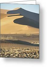 Sand Dunes In Namib Desert Greeting Card