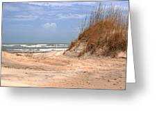 Sand Dunes  Greeting Card