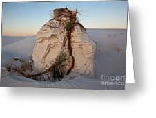 Sand Pedestal With Yucca Greeting Card