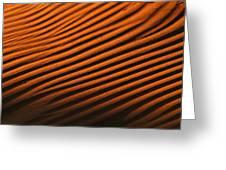 Sand Ripple Greeting Card