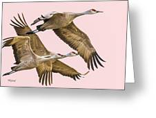 Sandhill Crane Family II Greeting Card