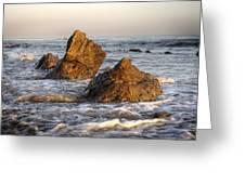Santa Barbara 11 Greeting Card