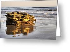 Santa Barbara 5 Greeting Card