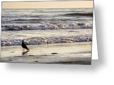 Santa Barbara 7 Greeting Card