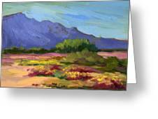 Santa Rosa Mountains In Spring Greeting Card