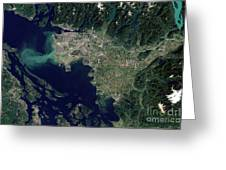 Satellite View Of The Frasier River Greeting Card