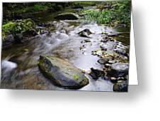 Satus Creek In Autumn Greeting Card