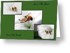 Save The Bees Save The World Greeting Card