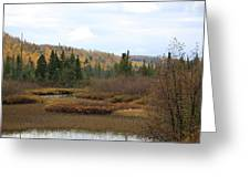 Sawtooth Swamp Greeting Card