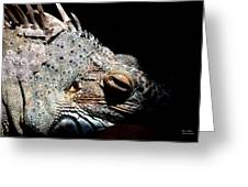 Scales And Spikes Greeting Card