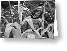Scarecrow In The Corn Black And White Greeting Card