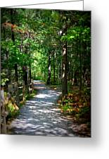 Scenic Pathway Greeting Card