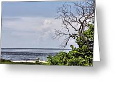 Scenic View At Emerson Point Greeting Card