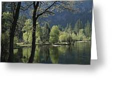 Scenic View Of The Merced River Greeting Card
