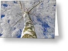 Snowworld Fineart  Greeting Card