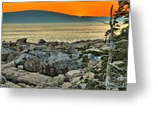 Schoodic Sunset Greeting Card