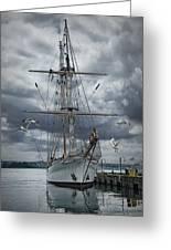 Schooner In Halifax Harbor Greeting Card