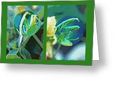 Science Class Diptych - Praying Mantis Greeting Card by Steve Ohlsen